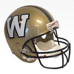 Riddell Winnipeg Blue Bombers Full Size Deluxe Replica Football Helmet